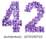 arabic numeral 42  forty two ... | Shutterstock . vector #1070190710