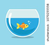 golden fish swimming in a... | Shutterstock .eps vector #1070255558