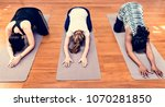 pregnant woman in yoga class | Shutterstock . vector #1070281850