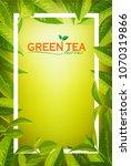 organic tea frame logo. green... | Shutterstock .eps vector #1070319866