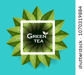 green tea leaves manu and... | Shutterstock .eps vector #1070319884