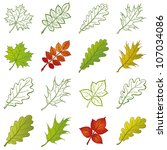 Leaves Of Different Plants  Se...
