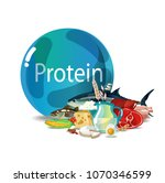 protein nutrition   a natural... | Shutterstock .eps vector #1070346599