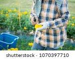 woman worker or gardener... | Shutterstock . vector #1070397710
