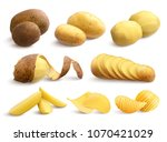 raw and fried potato set of... | Shutterstock .eps vector #1070421029