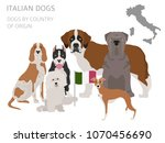 dogs by country of origin.... | Shutterstock .eps vector #1070456690