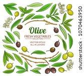 olive elements vector set | Shutterstock .eps vector #1070463950