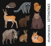 wild northern forest animals... | Shutterstock .eps vector #1070465663