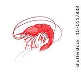 shrimp vector illustration....   Shutterstock .eps vector #1070517833