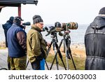 stora ror  sweden   april 7 ... | Shutterstock . vector #1070603003