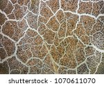 abstract cracked texture... | Shutterstock . vector #1070611070