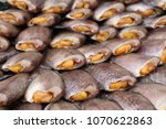 dried fish at the market | Shutterstock . vector #1070622863