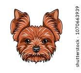 yorkshire terrier head. dog... | Shutterstock .eps vector #1070663939