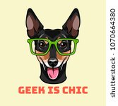 russian toy terrier geek. smart ... | Shutterstock .eps vector #1070664380