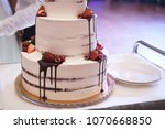 closeup of fruit cake with... | Shutterstock . vector #1070668850