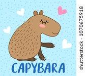 cute cartoon capybara...   Shutterstock . vector #1070675918
