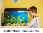 little child  studying fishes... | Shutterstock . vector #1070680259
