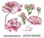 vector floral bouquet design ... | Shutterstock .eps vector #1070739950