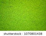 lemna or common duckweed...   Shutterstock . vector #1070801438