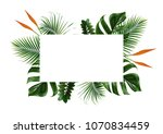 Tropical Leaves Frame Isolated...