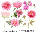watercolor pink flowers.... | Shutterstock . vector #1070840630
