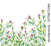 herbs and green grass with pink ... | Shutterstock . vector #1070872184