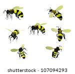 Wasps  Isolated On White...