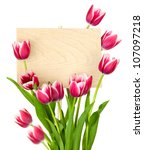 Beautiful Tulips and Empty Sign for message / wooden panel / isolated on a white background - stock photo