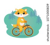 The Fox Rides A Bicycle. Vecto...