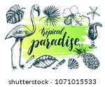 summer set. ink hand drawn... | Shutterstock .eps vector #1071015533