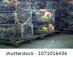 Fishing Traps Stacked