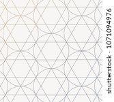 geometric vector pattern ... | Shutterstock .eps vector #1071094976