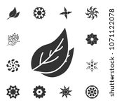 leaf icon. detailed set of...