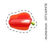 fresh appetizing vegetable for...   Shutterstock .eps vector #1071169478