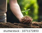 planting trees growth passion... | Shutterstock . vector #1071172853