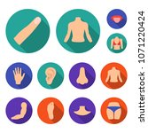 part of the body  limb flat... | Shutterstock .eps vector #1071220424