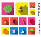 different kinds of vegetables...   Shutterstock .eps vector #1071220994