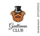 yorkshire terrier gentleman.... | Shutterstock .eps vector #1071245513