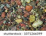 Colorful stones under the clear water of Lake McDonald. Glacier National Park, Montana. - stock photo
