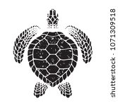 graphic sea turtle  vector | Shutterstock .eps vector #1071309518