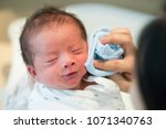 asian baby one week old | Shutterstock . vector #1071340763