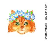 cute little red kitty with... | Shutterstock . vector #1071345524