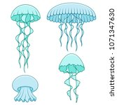 set of color illustrations with ... | Shutterstock .eps vector #1071347630