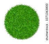 grass circle 3d. green plant ... | Shutterstock .eps vector #1071363800