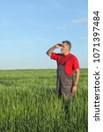 Small photo of Farmer or agronomist inspecting quality of wheat in spring, looking far away