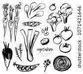 vector set of hand drawn... | Shutterstock .eps vector #1071421646