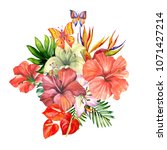 beautiful tropical flowers... | Shutterstock . vector #1071427214