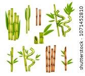 green bamboo decorative... | Shutterstock .eps vector #1071452810