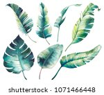watercolor tropical leaves ... | Shutterstock . vector #1071466448