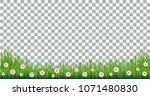 vector green grass with daisies ... | Shutterstock .eps vector #1071480830